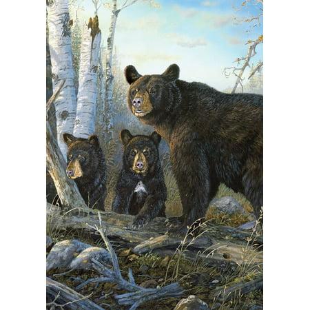 Wild Black Bears Summer Garden Flag Wildlife Nature Bear Family 12.5