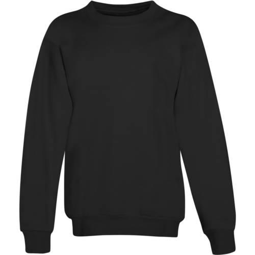Hanes Boys EcoSmart Fleece Sweatshirt