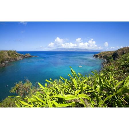 Hawaii Maui Honolua Bay Green Brush Overlooking Bright Blue Water Molokai In The Distance PosterPrint