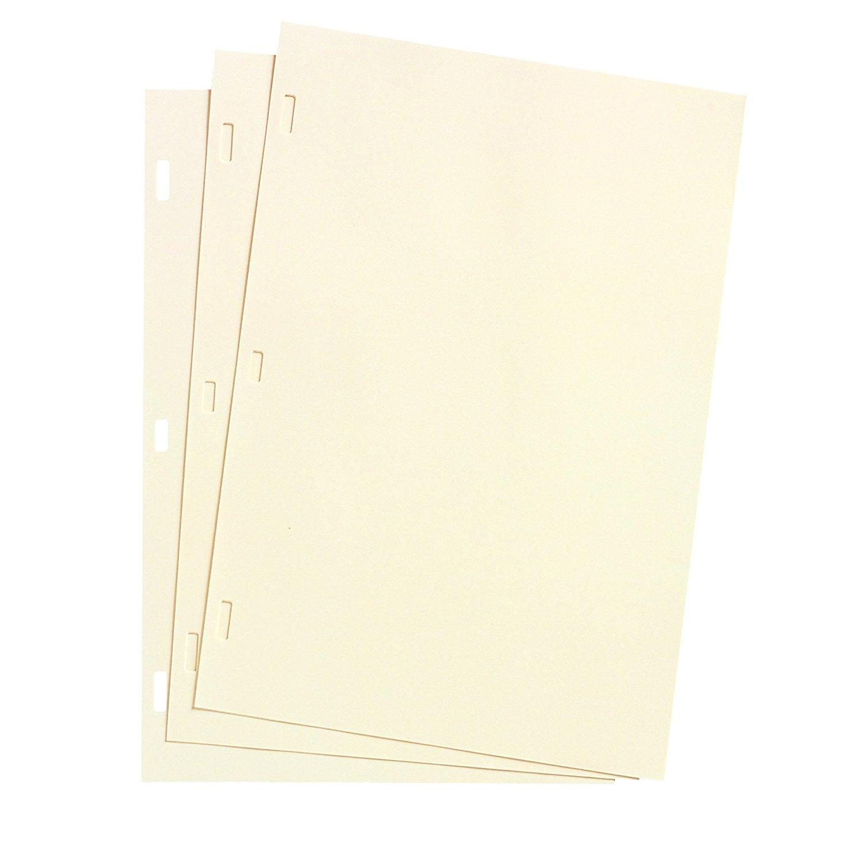 Acco Wilson Jones Looseleaf Minute Book Ledger Sheets, Iv...