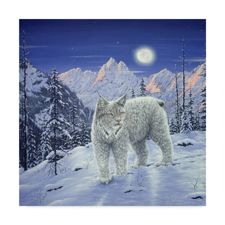 Trademark Fine Art 'Moonlight Wilderness' Canvas Art by Jeff Tift
