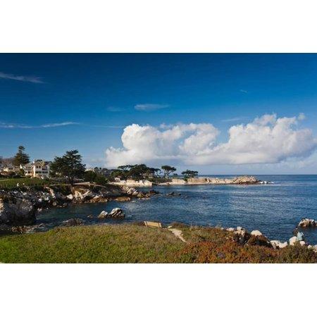Coastline, Monterey Bay, Monterey, California, USA Print Wall Art By Green Light Collection