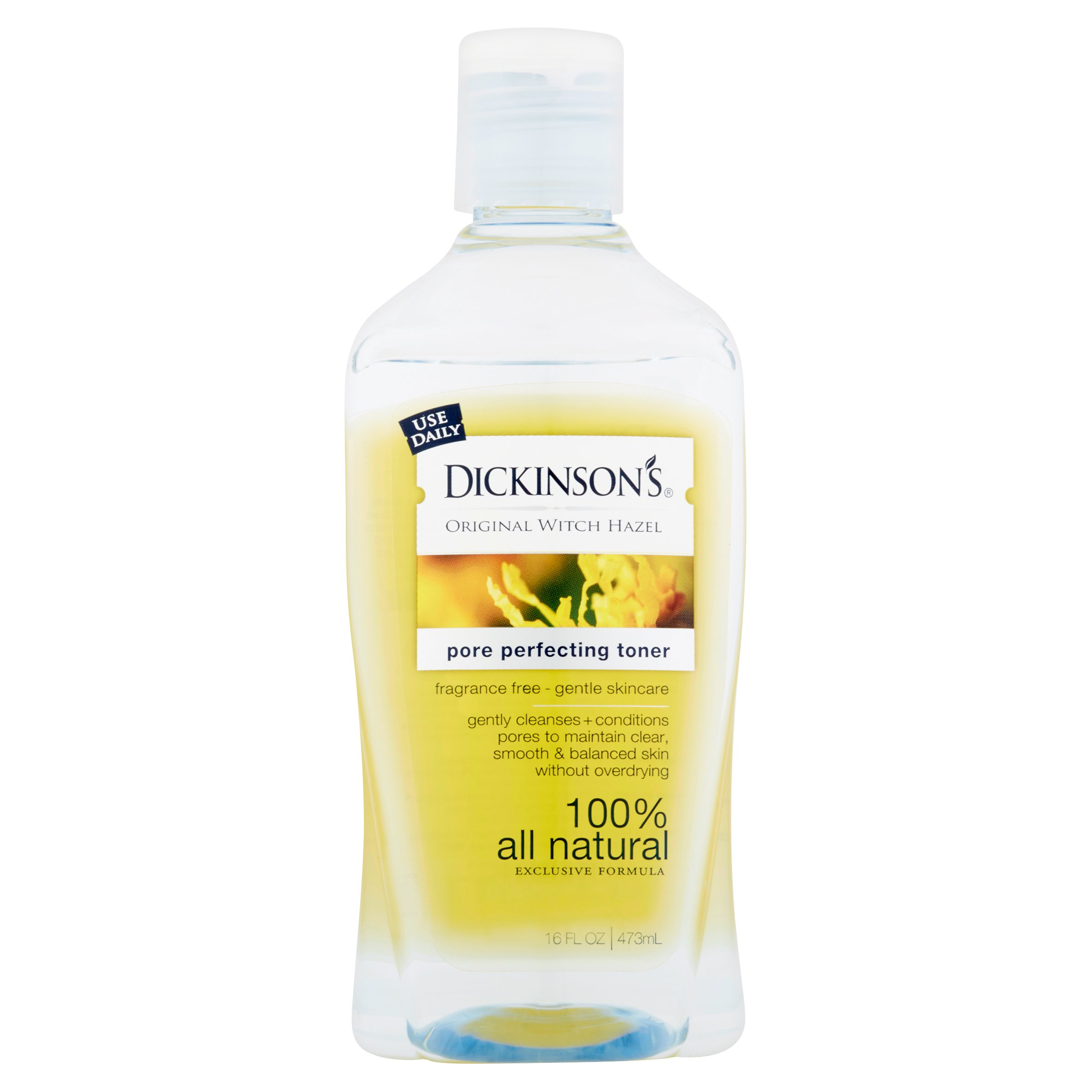 Dickinson's Original Witch Hazel Pore Perfecting Toner, 16 fl oz