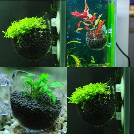 Fish Tank Glass Plant Pots Aquarium Mini Cup Grow Planter Shrimp Aquatic