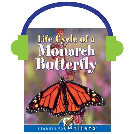 Life Cycle of A Monarch Butterfly Insect Life Cycles