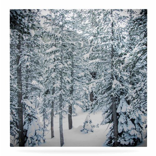 East Urban Home 'Winter Trials' Photographic Print on Metal