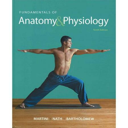 Fundamentals Of Anatomy Physiology Practice Anatomy Lab 30