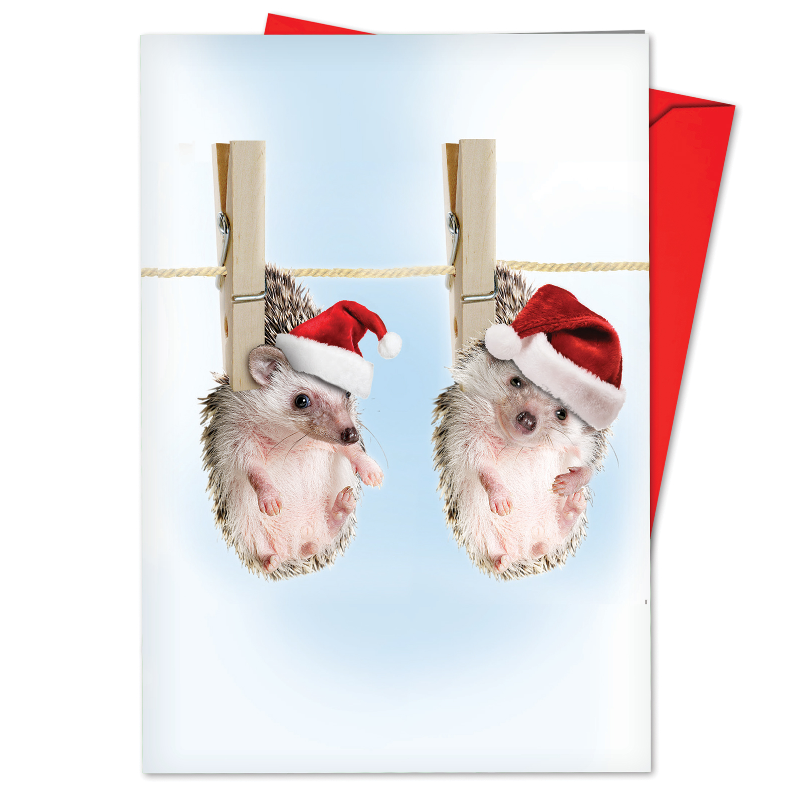 'B6541BXSG Cards From The Hedge Christmas Cards' Box Set of 12 Humorous Merry Christmas Greeting Cards with Envelopes by NobleWorks