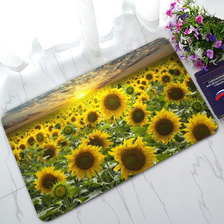 PHFZK Beautiful Sky Cloud Doormat, Nature Art Sunflower Field Landscape Doormat Outdoors/Indoor Doormat Home Floor Mats Rugs Size 30x18 (Nature Nap Mat)