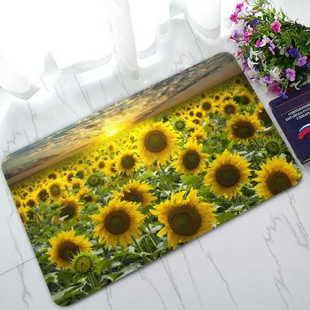 PHFZK Beautiful Sky Cloud Doormat, Nature Art Sunflower Field Landscape Doormat Outdoors/Indoor Doormat Home Floor Mats Rugs Size 30x18 inches ()