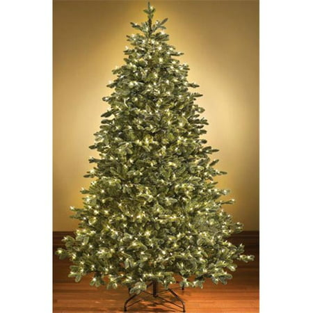 Queens of Christmas WL-TRSQ-15-LWW 15 ft. Pre Lit LED Warm White Sequoia Tree