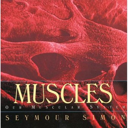 Muscles : Our Muscular System