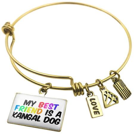Expandable Wire Bangle Bracelet My best Friend a Kangal Dog from Turkey -