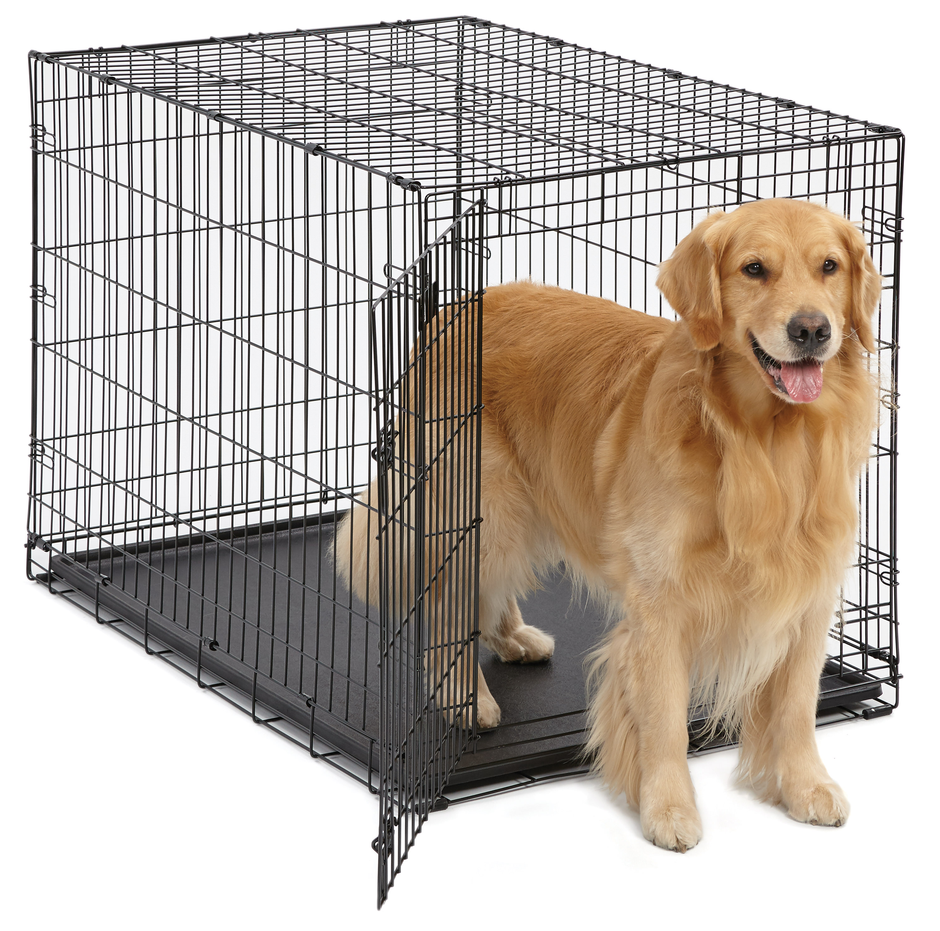 Single Door iCrate Metal Dog Crate, 42-Inch, Black by Midwest Homes For Pets