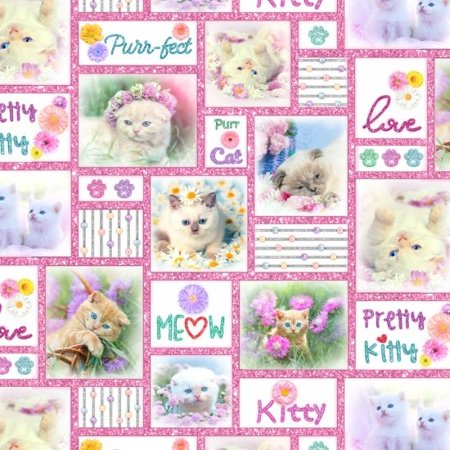 Kitty Glitter~Kittens in Squares Cotton Fabric by Studio E Fabrics