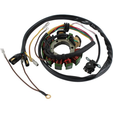 - db electrical apo4001 stator coil for polaris magnum 425 95 96 97 98 1995 1996 1997 1998, sportsman 400 01 02 2001 2002, 500 96 97 1996 1997,xplorer 1997 97,335 sportsman 1999 2000 99 00