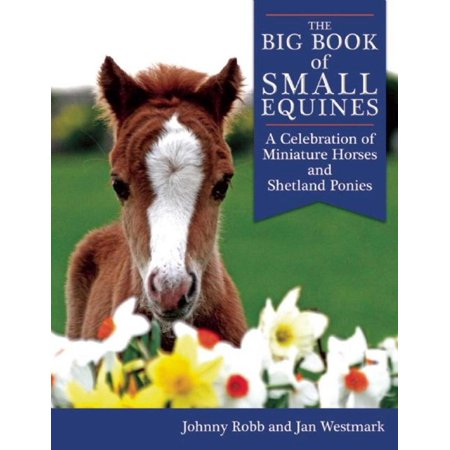 The Big Book of Small Equines : A Celebration of Miniature Horses and Shetland Ponies (Small Horses)