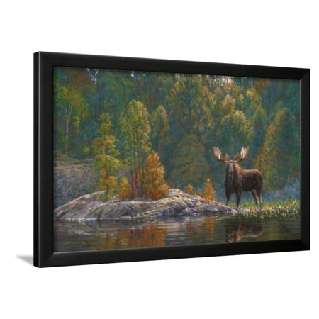 North Country Moose Framed Print Wall Art By Bruce -