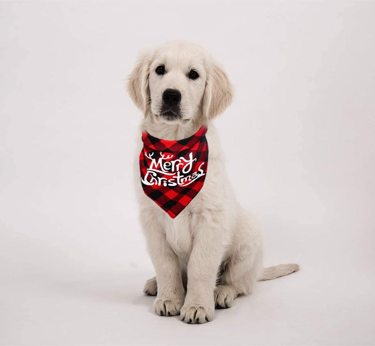 It/'s a bird.. it/'s Super Pet It/'s a plane.. Pet Bandanas /& Accessories for Cats Dogs
