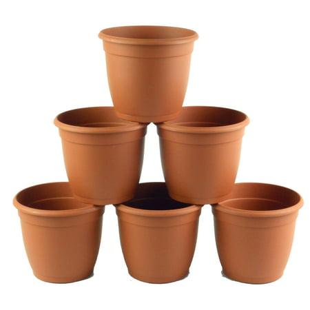 TEKU 5.5 in. Decorative Terra Cotta Plastic Flower Pot (6 pack)