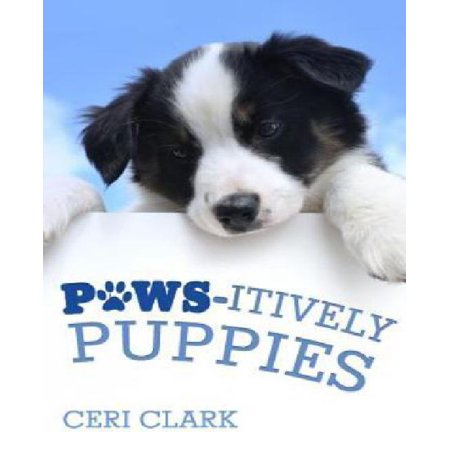 Paws Itively Puppies  The Secret Personal Internet Address   Password Log Book For Puppy   Dog Lovers