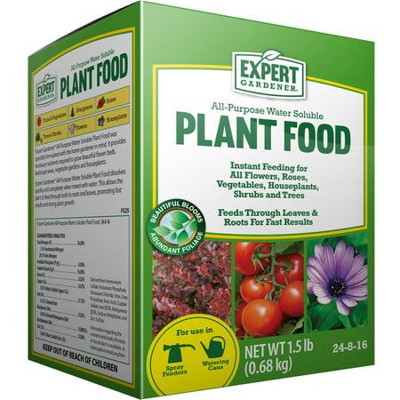 expert gardener all purpose water soluble plant food 24 8 16 1 5 lbs
