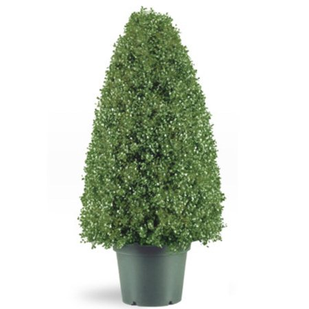 """Walmart Seller Central >> 36"""" Potted Artificial Boxwood Topiary Tree - Walmart.com"""