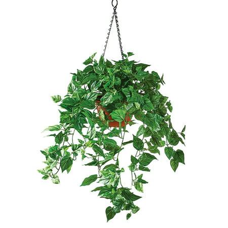 Artificial Pothos Plant Realistic Decorative Outdoor Hanging Basket