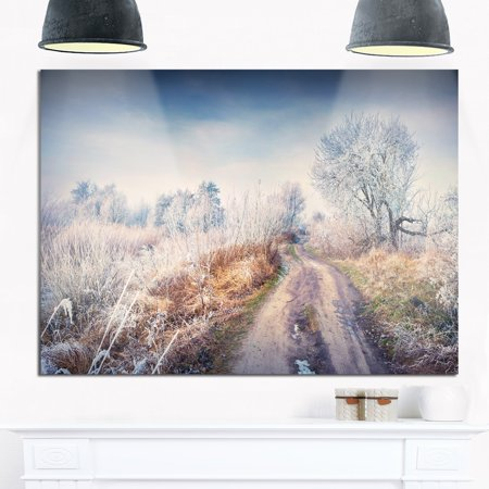 DESIGN ART First Frost in Forest - Landscape Photography Glossy Metal Wall Art