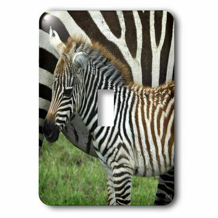 3dRose Common zebra Kenya Africa 2 Single Toggle Switch lsp 9859 1