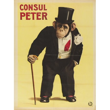 Consul Peter Monkey In Top Hat And Tails Stretched Canvas -  (18 x 24)