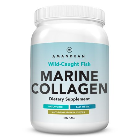 Premium Anti-Aging Marine Collagen Powder 17.6 Oz | Wild-Caught Hydrolyzed Fish Collagen Peptides | Type 1 & 3 Collagen Protein Supplement | Amino Acids for Skin, Hair, Nails | Paleo Friendly, (Foods Good For Your Hair Skin And Nails)