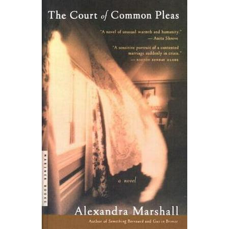 The Court of Common Pleas - eBook