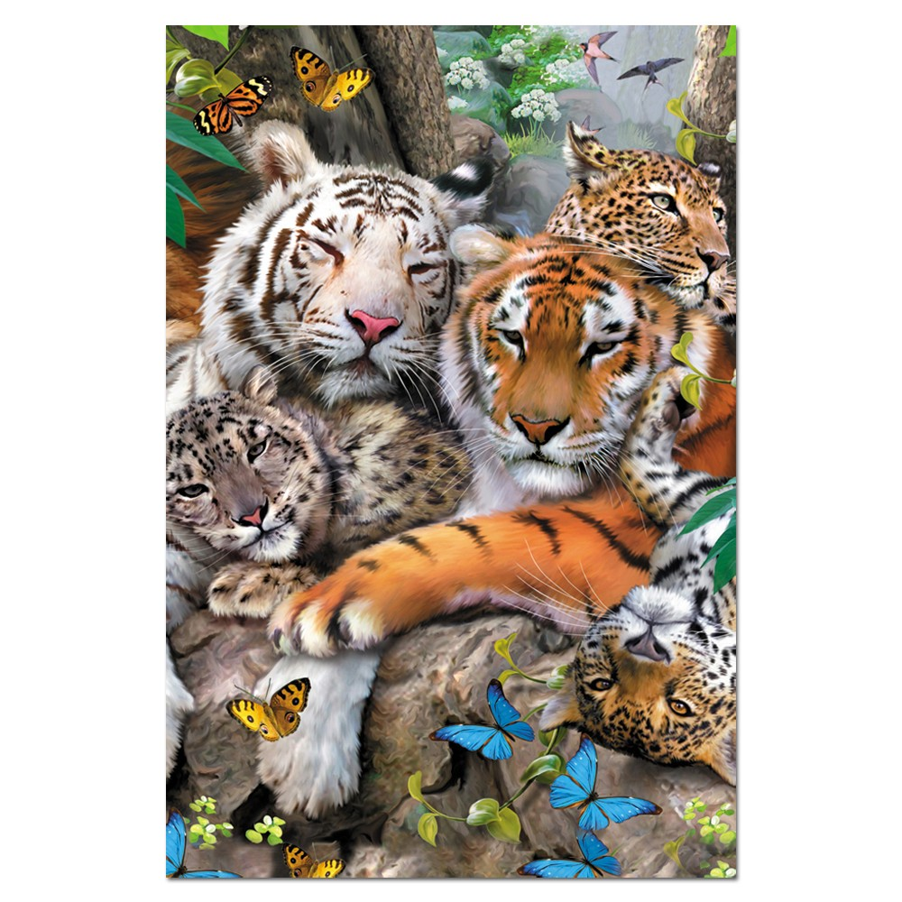 Tree-Free Greetings Big Cat Cuddle Boxed ECOnotes Blank Note Cards-FS66810