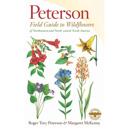 A Peterson Field Guide to Wildflowers : Northeastern and North-central North