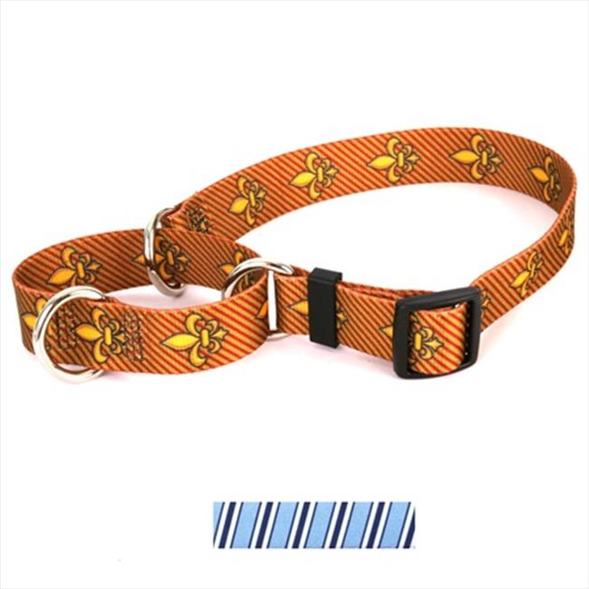 Yellow Dog Design M-TSBBW102M Team Spirit Lt.  Blue  Dark Blue and White Martingale Collar - Medium
