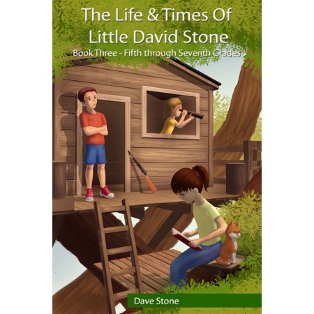 The Life and Times of Little David Stone: Book Three - Fifth through Seventh Grades - (The Life And Times Of David Gale)