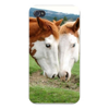 Apple Iphone Custom Case 4 4s White Plastic Snap on - American Paint Horse Heads w/ Mane East access to all buttons and ports