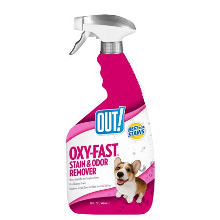 OUT! Oxygen Activated Pet Stain & Odor Remover, 32 (Best Dog Urine Stain And Odor Remover)