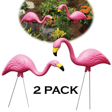 Pink Flamingos For Sale (G2 PINK FLAMINGO 2PK - Pack)