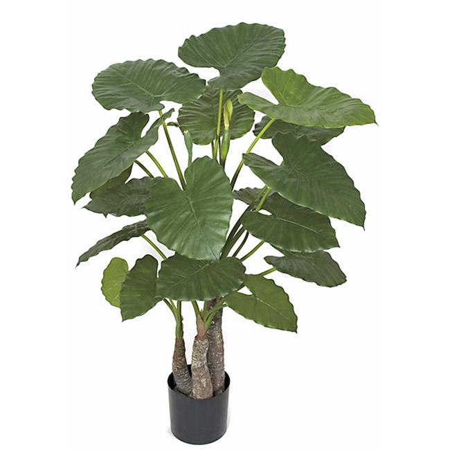 Autograph Foliages P-101750 48 in. Alocasia Calidora Tree