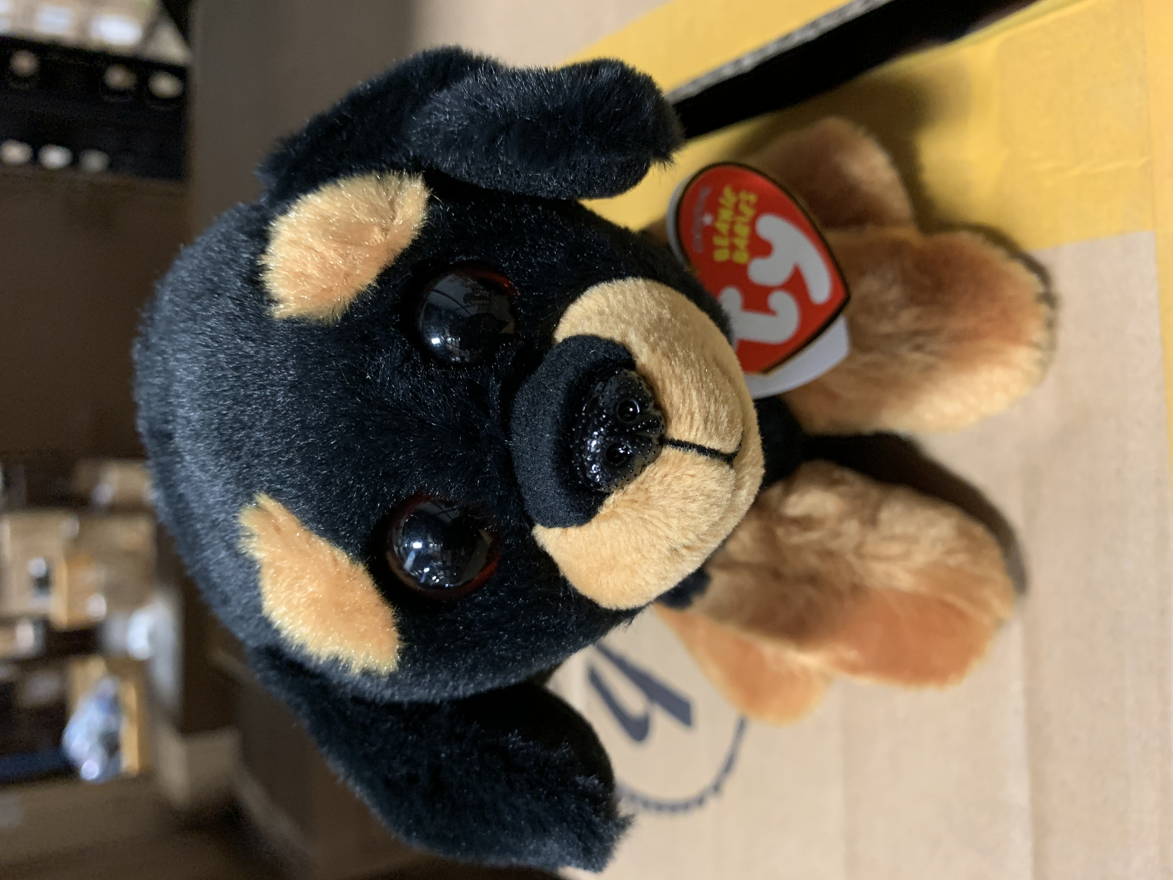 """FROM OUR DOG /& PUPPY STOCK Ty® 6/"""" Trevour Beanie Babies® Sitting Rottweiler"""