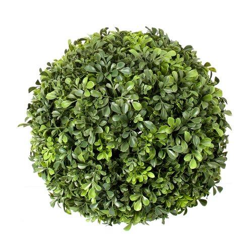 Charlton Home Plastic Ball Boxwood Topiary
