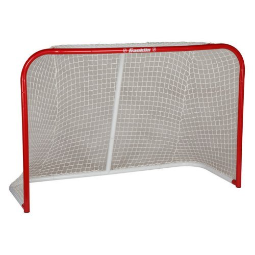 HX Pro 4 x 6 ft. Professional Steel Hockey Goal