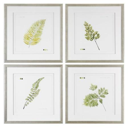 Uttermost Watercolor Leaf Study Prints - Set of 4