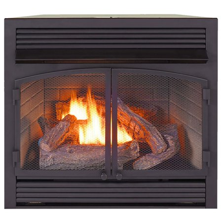 ProCom Heating Dual Fuel Ventless Fireplace Insert - 32,000 BTU, Remote Control, FBNSD400RT-ZC ()