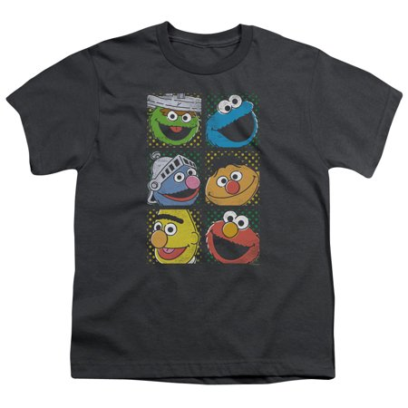 sesame street classic children's tv show group squares big boys youth t-shirt