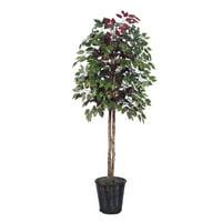 Vickerman 6' Artificial Capensia Tree in Rattan Basket
