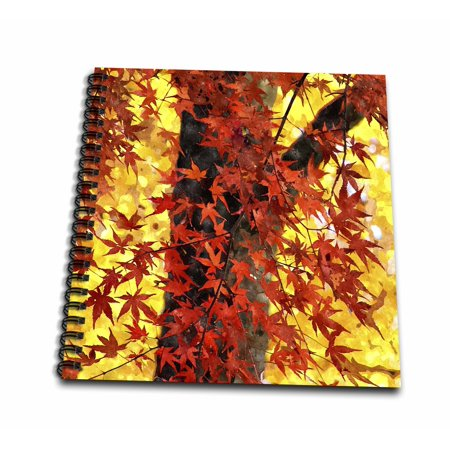 Maple Easels - 3dRose Lovely Maple Tree with Autumn Red Leaves and Golden Sunlight Painting - Drawing Book, 8 by 8-inch