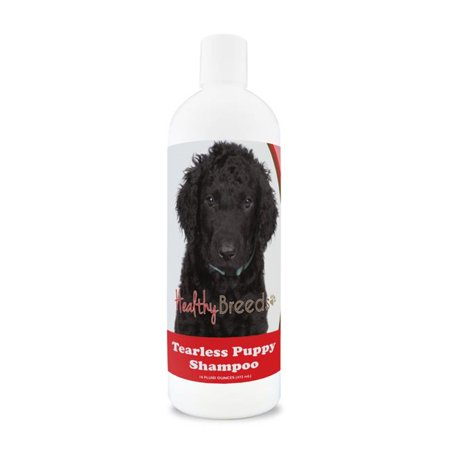 Healthy Breeds 840235185932 Curly-Coated Retriever Tearless Puppy Dog